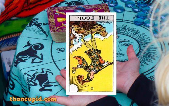 the fool chiều ngược