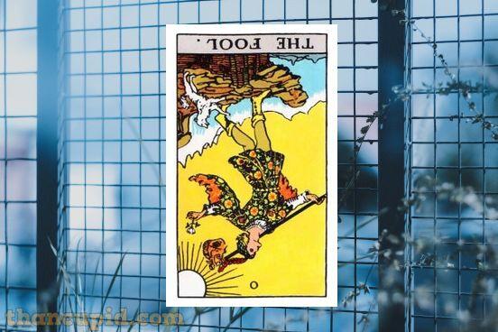 The Fool ngược chiều