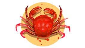 cung mọc bạch dương